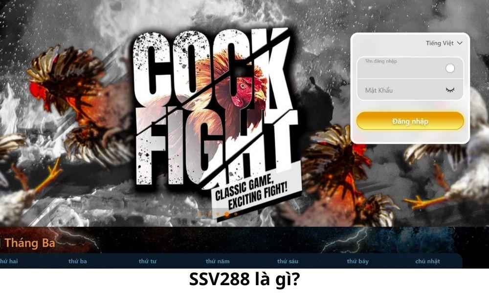 SSV288 là gì